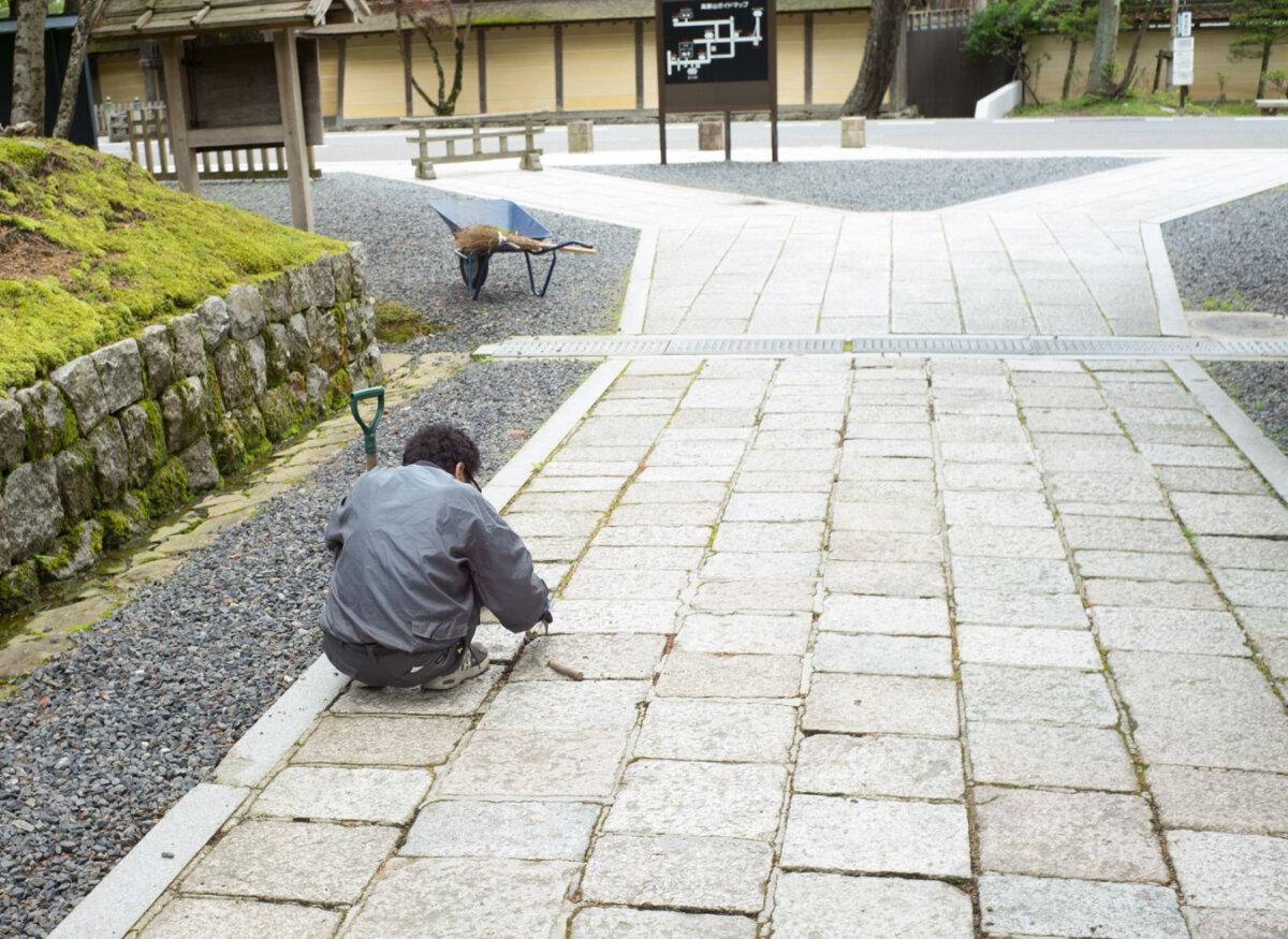 Ordinary Japan - Denis Grau Studio